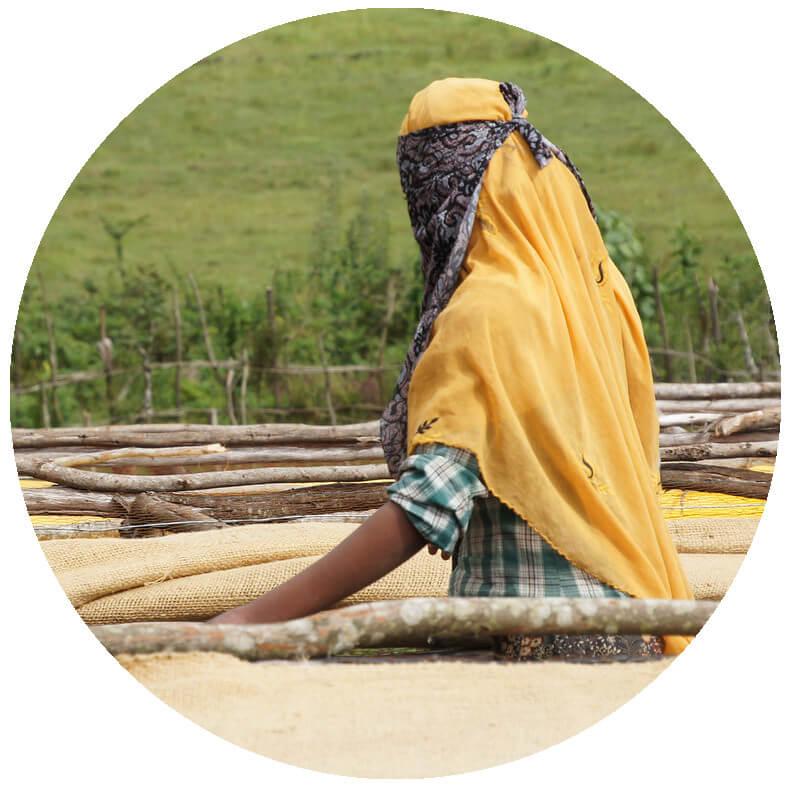 етиопия жена кафе